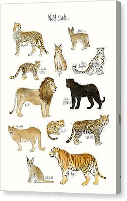 Fauna Canvas Print - Wild Cats by Amy Hamilton