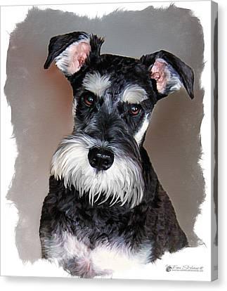 Tom Schmidt Canvas Print - Wild Cody Wyo by Tom Schmidt