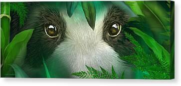 Wild Eyes - Giant Panda Canvas Print by Carol Cavalaris