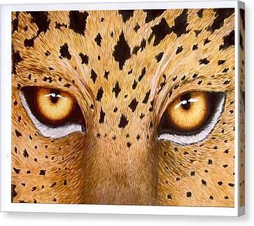 Wild Eyes Canvas Print by Lorraine Foster