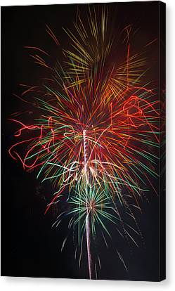 Wild Fireworks Canvas Print by Garry Gay