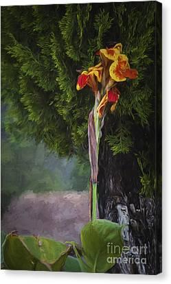 Wild Flower  ... Canvas Print