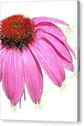 Canvas Print featuring the photograph Wild Flower One  by Heidi Smith