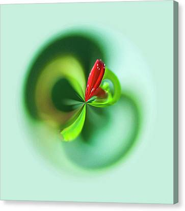 Canvas Print featuring the photograph Wild Flower Orb by Bill Barber