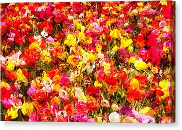 Wild Flowers Canvas Print by Caito Junqueira