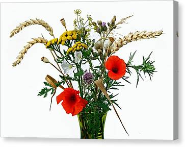 Wild Flowers Canvas Print by Manfred Lutzius