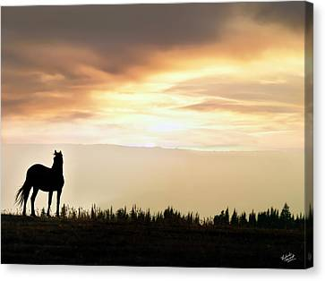 Wild Horse Sunset Canvas Print by Leland D Howard