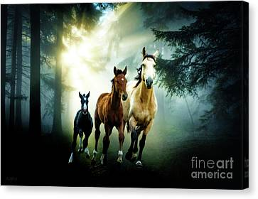 Sun Rays Canvas Print - Wild Horses In The Woods by KaFra Art