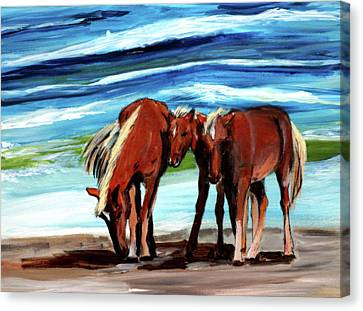 Wild Horses Outer Banks Canvas Print