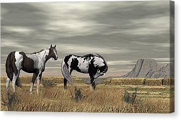 Wild Horses Canvas Print by Walter Colvin