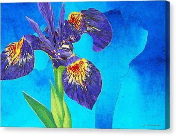 Blue Flowers Canvas Print - Wild Iris Art By Sharon Cummings by Sharon Cummings
