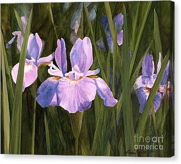 Canvas Print featuring the painting Wild Iris by Laurie Rohner