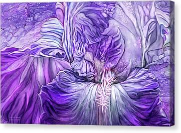 Canvas Print featuring the mixed media Wild Iris Purple by Carol Cavalaris
