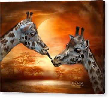 Wild Kisses Canvas Print by Carol Cavalaris