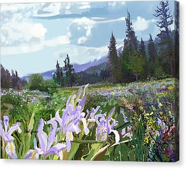 Wild Meadow Canvas Print
