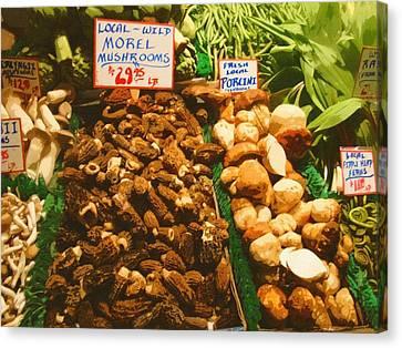 Wild Morell Mushrooms Canvas Print by Lydia L Kramer
