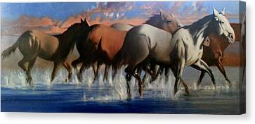 Wild Mustangs Of The Verder River Canvas Print