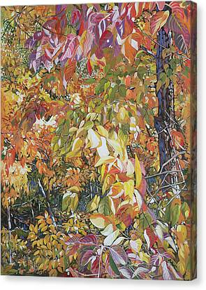 Canvas Print - Wild Persimmon 4 by Nadi Spencer
