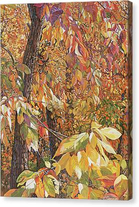 Canvas Print - Wild Persimmon Trees by Nadi Spencer