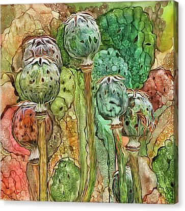 Seed Canvas Print - Wild Poppy Pods by Carol Cavalaris