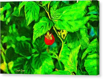 Wild Raspberry - Da Canvas Print by Leonardo Digenio