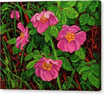 Wild Roses Canvas Print by Rob MacArthur