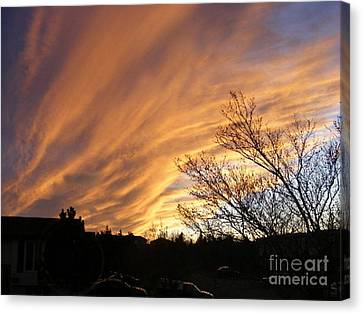 Wild Sky Of Autumn Canvas Print by Barbara Griffin