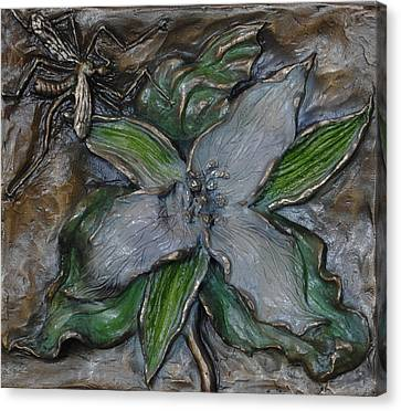Wild Trillium And Cranefly  Canvas Print by Dawn Senior-Trask