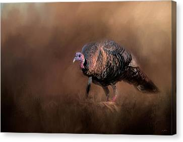 Wild Turkey In The Woods Canvas Print by Jai Johnson