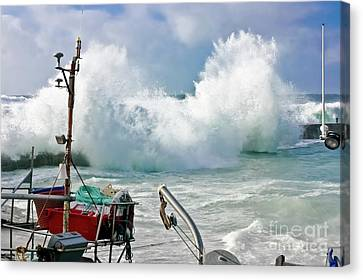 Wild Waves In Cornwall Canvas Print by Terri Waters