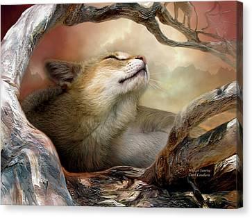 Wildcat Sunrise Canvas Print by Carol Cavalaris