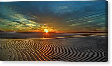 Topsail Canvas Print - Wilderness Beach Heartbreak by Betsy Knapp
