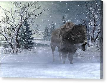 Winter Storm Canvas Print - Wilderness by Betsy Knapp