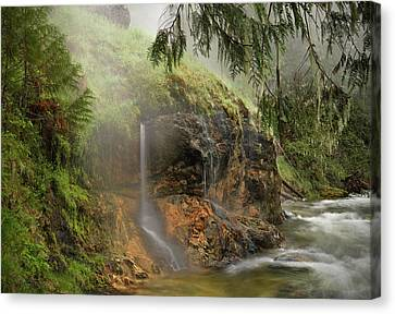 Wilderness Hot Springs Canvas Print by Leland D Howard