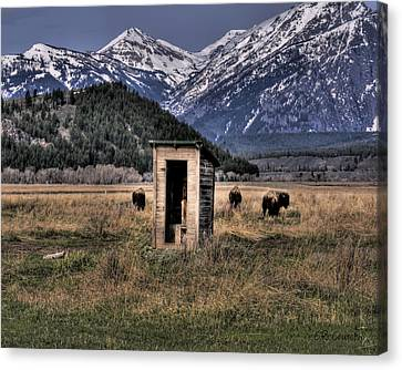 Wilderness Outhouse Canvas Print
