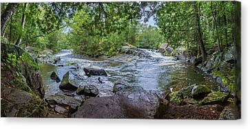 Canvas Print featuring the photograph Wilderness Waterway by Bill Pevlor