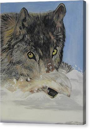 Wildeyes In The Snow Canvas Print