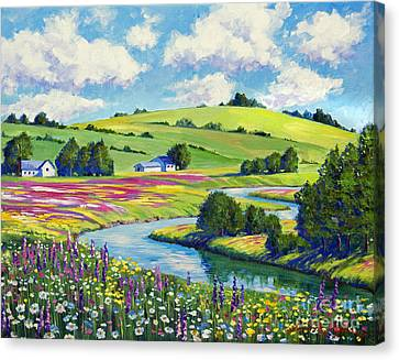Wildflower Fields Canvas Print by David Lloyd Glover