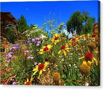 Fort Missoula Canvas Print - Wildflower Garden by Leah Grunzke