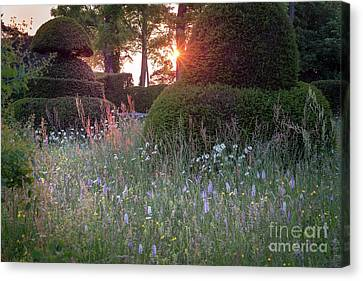 Wildflower Meadow At Sunset, Great Dixter Canvas Print