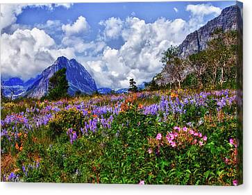 Wildflower Profusion Canvas Print by Albert Seger