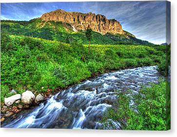 Wildflower River Canvas Print by Scott Mahon