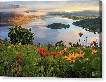 Wildflowers Above Deer Creek Canvas Print