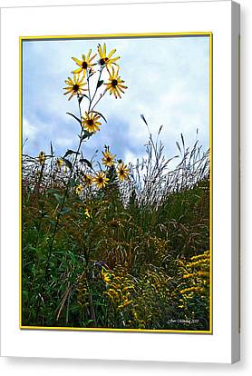 Canvas Print featuring the photograph Wildflowers And Mentor Marsh by Joan  Minchak