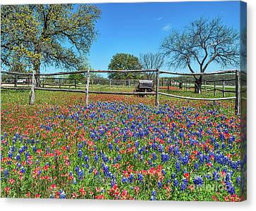 Wildflowers Canvas Print - Wildflowers And Old Wagon by Tod and Cynthia Grubbs
