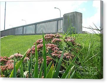 Wildflowers Beside The Bridge Canvas Print by Marsha Heiken