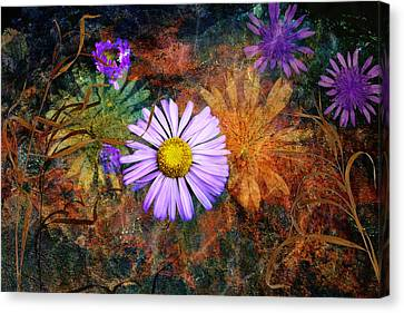 Wildflowers Canvas Print by Ed Hall