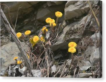 Canvas Print featuring the painting Wildflowers In Rocks by Smilin Eyes  Treasures