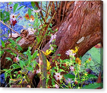 Wildflowers On A Cypress Knee Canvas Print