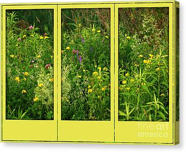 Canvas Print featuring the photograph Wildflowers Through A Window by Smilin Eyes  Treasures